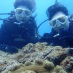沖縄ダイビング☆6/9 珊瑚礁体験ダイビング 10時~ えりな
