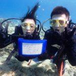 沖縄ダイビング☆ 6/27 10時半~ 青の洞窟体験ダイビング&スノーケル たく・ドラ