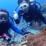 沖縄ダイビング☆6/9 ビーチFUNダイビング&珊瑚礁体験ダイビング なすび