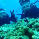 沖縄ダイビング☆7/29  サンゴ体験ダイビング  10:30~ なすび