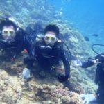 沖縄ダイビング☆7/31  特上体験ダイビング  10:30~  たく・なすび