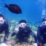 沖縄ダイビング☆8/1  青の洞窟体験ダイビング  10:30~ なすび・たく・しょうた