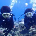 沖縄ダイビング8/11  珊瑚プチ体験ダイビング  10:30~ しおん