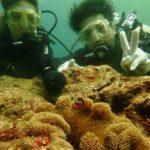 沖縄ダイビング☆8/14 珊瑚礁体験ダイビング 10時半~ なすび・ゆうき