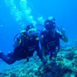 沖縄ダイビング☆8/15  慶良間ボートFUN+体験ダイビング  なすび