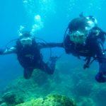 沖縄ダイビング☆8/16  サンゴ礁体験ダイビング  10:30~ なすび