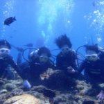 沖縄ダイビング☆8/17 青の洞窟体験ダイビング 10時半~ えりな・しおん