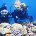 沖縄ダイビング☆8/21 青の洞窟体験ダイビング 10時半~ なすび・しょーた
