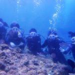 沖縄ダイビング☆8/24  青の洞窟体験ダイビング  15時~  しおん・えりな