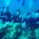 沖縄ダイビング☆8/27  サンゴ礁体験ダイビング  15:30~ なすび・たく