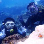沖縄ダイビング☆8/30  サンゴ礁体験ダイビング  15:00~ たく