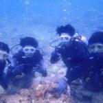 沖縄ダイビング☆8/30  サンゴ礁体験ダイビング  15:00~ しおん・なすび