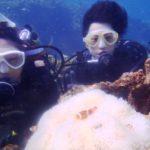 沖縄ダイビング☆8/31  サンゴ礁体験ダイビング 8:00~ なすび