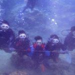 沖縄ダイビング☆8/31  サンゴ礁体験ダイビング  13:00~