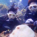 沖縄ダイビング☆8/31  サンゴ礁体験ダイビング  10:30~ なすび