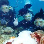 沖縄ダイビング☆10/1 サンゴ礁体験ダイビング 13時~ たく