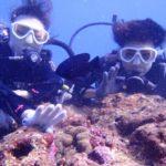 沖縄ダイビング☆10/1 サンゴ礁体験ダイビング 8時~ しおん