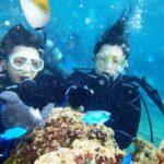 沖縄ダイビング☆ 10/4 8時~ 珊瑚体験ダイビング たく
