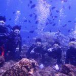 沖縄ダイビング☆ 10/11 10時~ 珊瑚体験ダイビング しおん・なすび