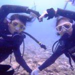沖縄ダイビング☆ 10/11 15時~ 珊瑚体験ダイビング しおん