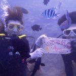 沖縄ダイビング☆10/13 サンゴ礁体験ダイビング 8:00~ なすび