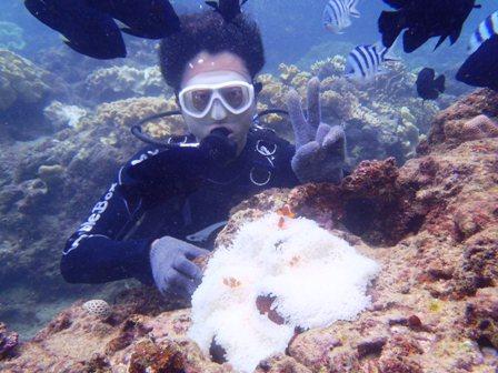 沖縄ダイビング☆10/18 サンゴ礁体験ダイビング2ダイブコース 13時~ なすび