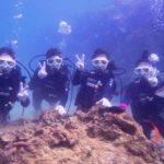 沖縄ダイビング☆ 10/31 珊瑚体験ダイビング 13時~ しおん・なすび