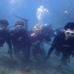 沖縄ダイビング★11/5 サンゴ礁体験ダイビング 13時~ たく・しおん