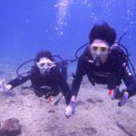 沖縄ダイビング☆ 11/11 8時 珊瑚体験ダイビング 担当 しおん