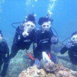 沖縄ダイビング☆11/13  サンゴ礁体験ダイビング  11:00~ なすび・たく