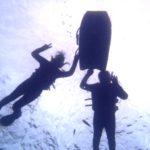 沖縄ダイビング☆11/17 サンゴ礁シュノーケリング&体験ダイビング しおん