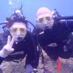 沖縄ダイビング☆11/20 サンゴ礁体験ダイビング 13:00~ なすび