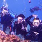 沖縄ダイビング☆11/22  青の洞窟体験ダイビング 13:00~  しおん・なすび