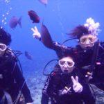 沖縄ダイビング☆11/22  青の洞窟体験ダイビング 8:00~  なすび・しおん