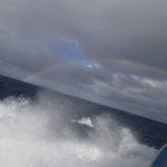 沖縄ダイビング☆11/22  慶良間ボートFUNダイビング  たく