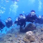 沖縄ダイビング☆11/23  サンゴ礁体験ダイビング 10:30~  なすび・たく
