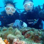沖縄ダイビング☆11/25 13時~ 砂辺体験ダイビング 担当たく