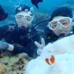 沖縄ダイビング☆12/7 サンゴ礁体験ダイビング 担当たく
