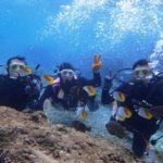 沖縄ダイビング 12/8 珊瑚体験ダイビング 8時~ たく