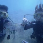 沖縄ダイビング☆12/9  サンゴ礁体験ダイビング  11:30~  たく