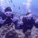 沖縄ダイビング☆2018/1/1 砂辺体験ダイビング 担当しおん