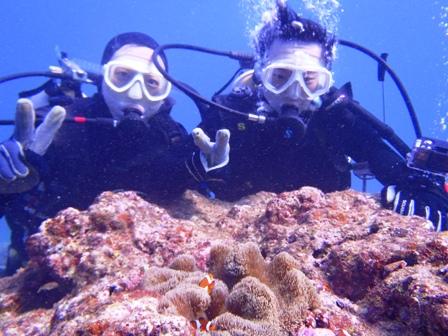 沖縄ダイビング☆1/14   サンゴ礁体験ダイビング   9:00~ しおん