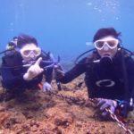 沖縄ダイビング☆1/28 サンゴ礁体験ダイビング 14時~ なすび