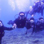 沖縄ダイビング☆1/28 サンゴ礁体験ダイビング 13時~ しおん・たく