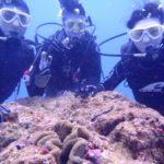 沖縄ダイビング☆2/22  珊瑚のお花畑体験ダイビング   8:00~ なすび・たく