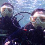 沖縄ダイビング☆2/18  珊瑚のお花畑体験ダイビング  10:30~ しおん
