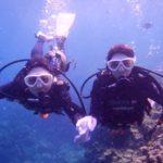 沖縄ダイビング☆2/19  青の洞窟体験ダイビング  13:00~ えりな