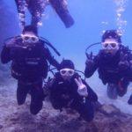沖縄ダイビング☆ 2/6 崎本部体験ダイビング 10時~ しおん・なすび