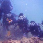 沖縄ダイビング☆2/16  珊瑚の花畑体験ダイビング  16:00~ なすび・しおん