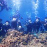 沖縄ダイビング☆2/19  青の洞窟体験ダイビング  13:00~ たく・なすび・とも